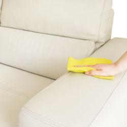 Maber-prodotti-efficaci-pulizia-divani-in-pelle